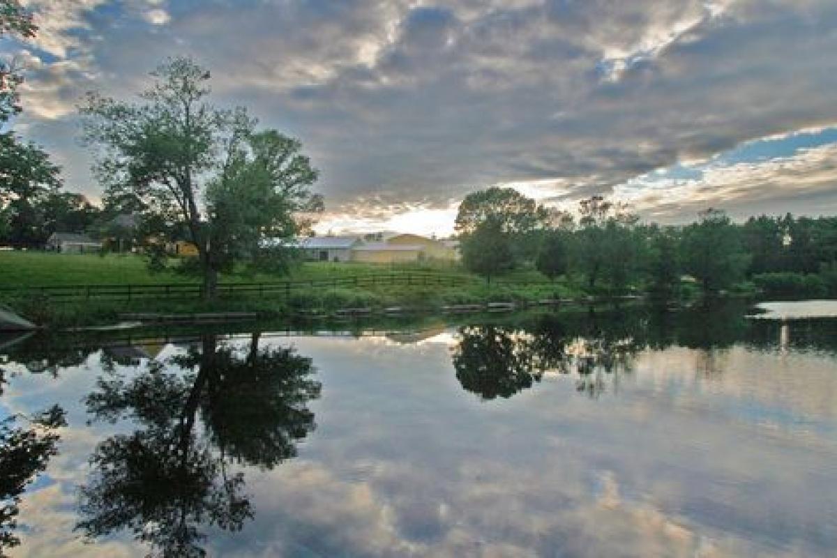 Leonard's Pond