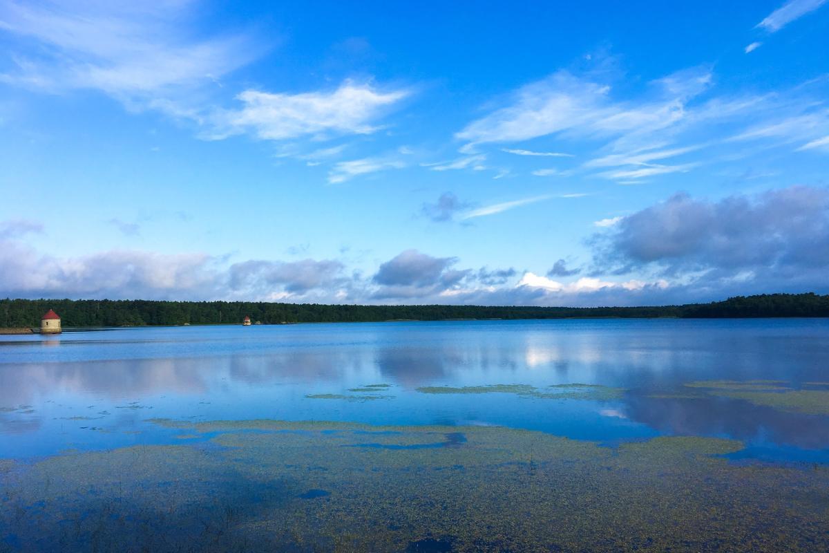 Quitticas Pond