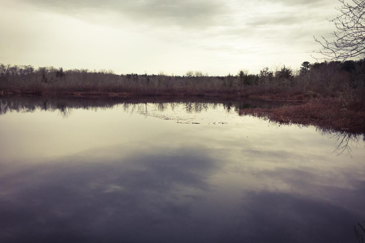 Snipatuit Pond